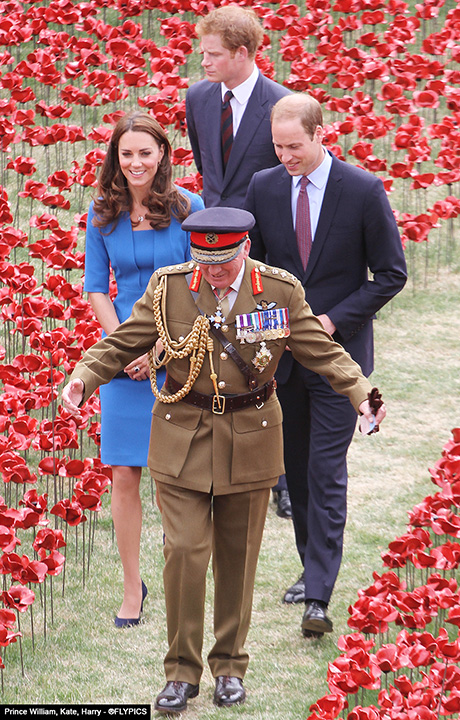 royals_Poppy_six